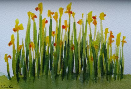 Daffodil Patch - original watercolour, by Vicky Curtin
