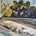 Waikato River, Hammond Park - original oil painting, by Vicky Curtin