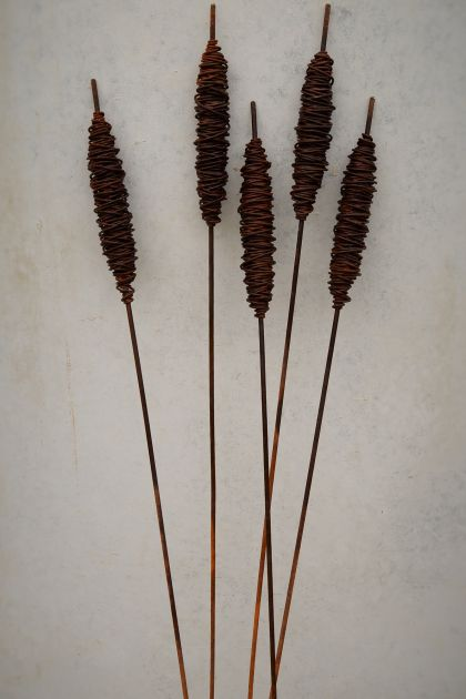 Rusty Bulrushes (SMALL)