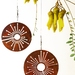 Corten spinning Alliums - FREE NZ WIDE DELIVERY