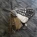 Ceramic Moth