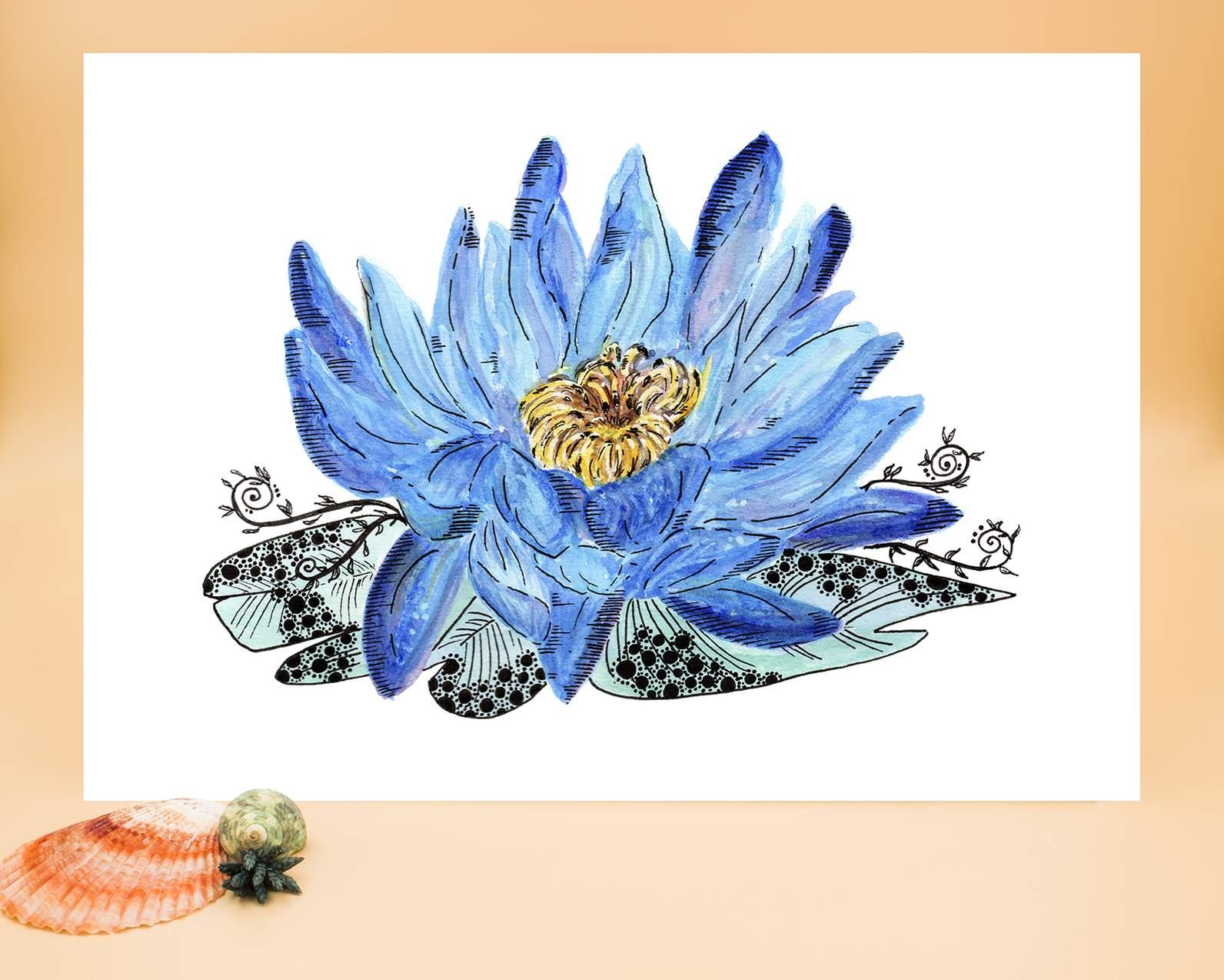Water lily a3 floral art print next nz 49 00