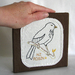 NZ Robin Embroidery