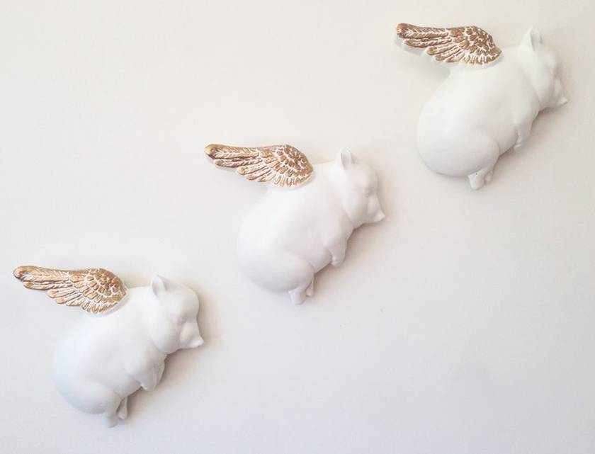 Oink Flying Pigs - White & Gold