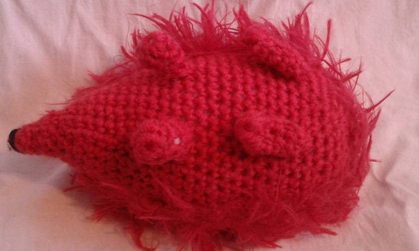 Raspbri the Hedgehog
