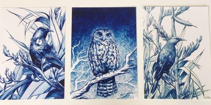 NZ Native Birds - Tui & Ruru - 3 print set by Shane Prouting