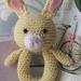 Rabbit Rattle (Pooh's friend)