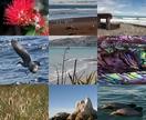 Beach, Multi Image Photo Block