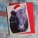 Cow Christmas Card x 4