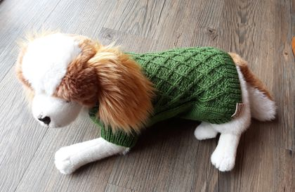 Green Lattice Pattern Dog coat - Wool