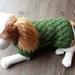 Green Lattice Pattern Dog coat - Wool