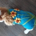 Spring Dog Coat - Wool - Hand knitted