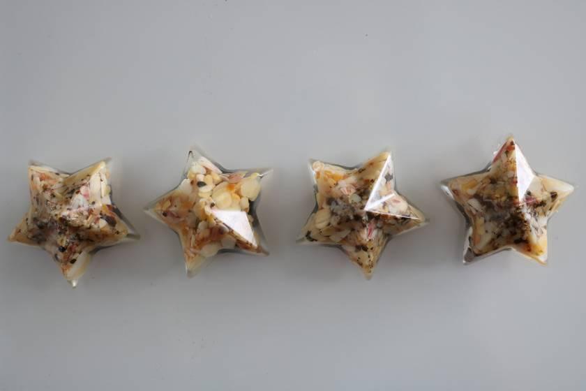Sandy shell star magnets -set of 4
