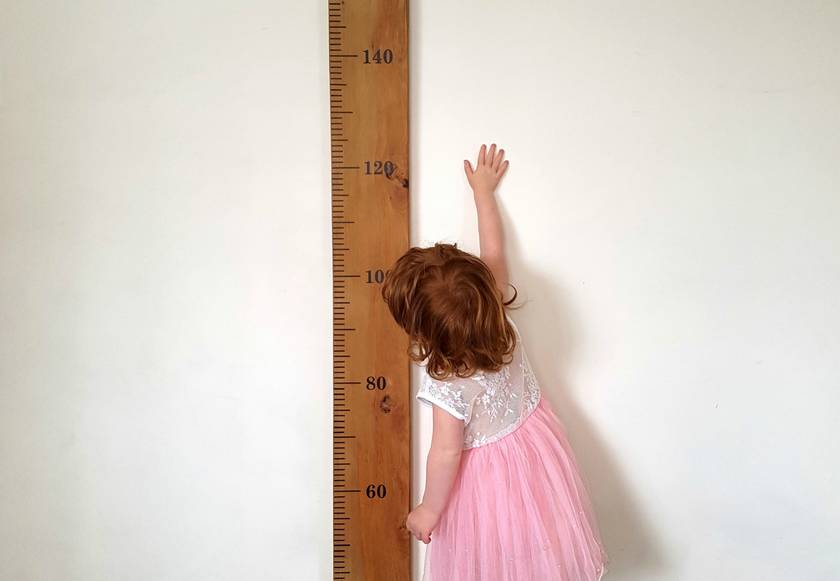 Wooden Height Chart Ruler On Rimu Plain or Personalised
