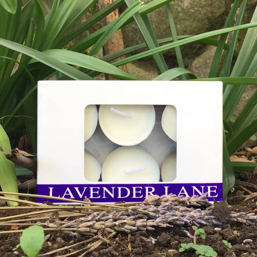 Lavender Tea Light Soy Wax Candles - 6 Pack