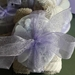Lavender Soap & Face Cloth Pack