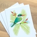 Kotare - Kingfisher Gift Cards x 3