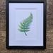 Fern Leaf Greenstone Drawing A5 Print