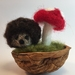 Walnut Hedgehog baby and toadstool