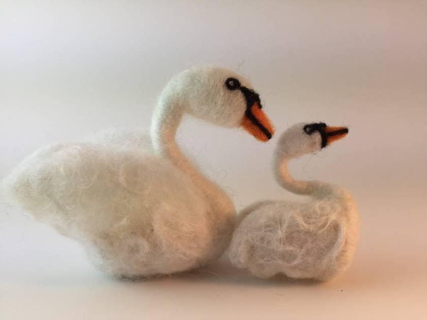 Walnut swan