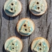 5 Stoneware Fish Buttons