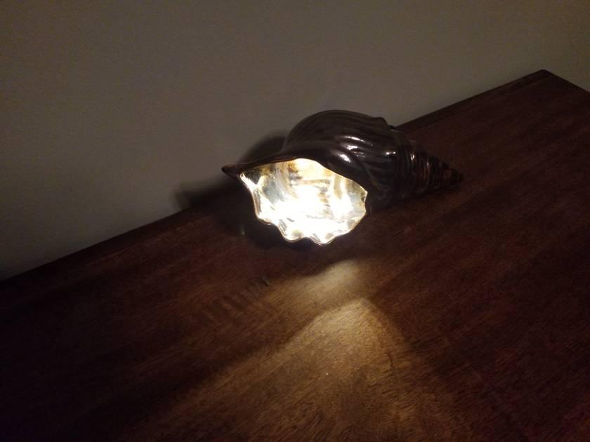 Bronze Shell Table Lamp - LED