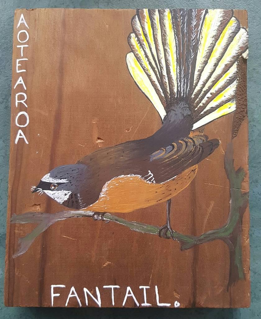 Fantail native bird