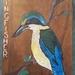 Kingfisher Native Bird