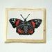 NEW ZEALAD RED ADMIRAL linocut print