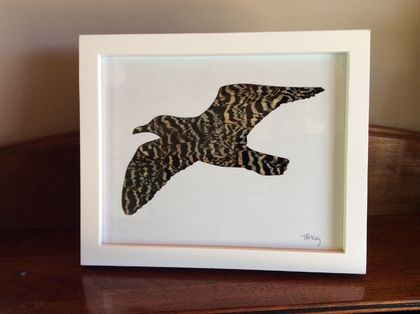 Framed feather seagull