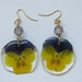 Real pressed pansy flower earrings