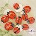 Ladybug Counting Stones