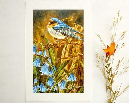 Swallow Print - NZ Bird Art - Mini Prints