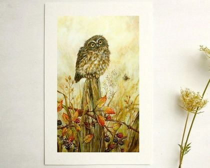 Morepork Owl Print - NZ Bird Art