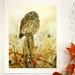 "8x10"" Print - Baby Morepork Owl - NZ Art Print"