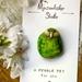 Painted Pebble Kakapo Pin / Brooch - NZ Bird Jewellery