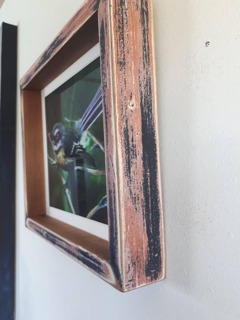 """""""Piwakwaka"""" Framed Print"""