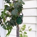"""Mae"" Plant Hanger"