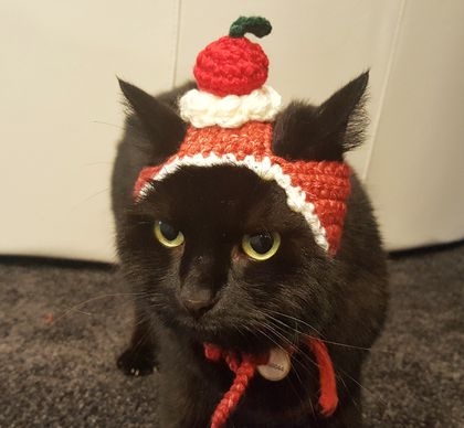 Dessert Hat with Cherry On Top