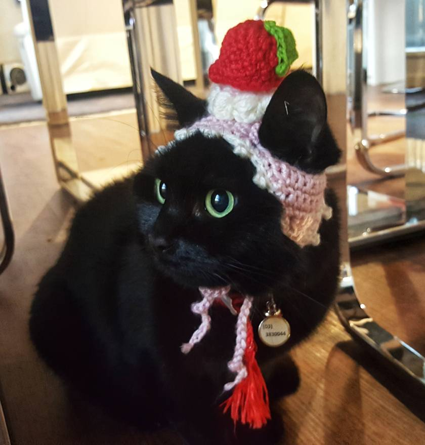 Dessert Hat with Strawberry on top