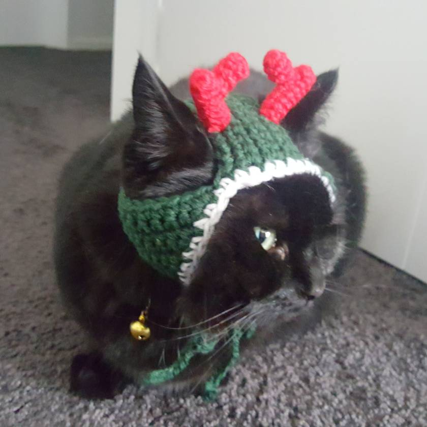 Christmas Reindeer Hat for Cats