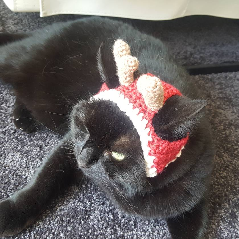 Christmas Reindeer Hat for Cats( Red)