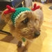 Christmas Reindeer Hat for S/M Size Dog