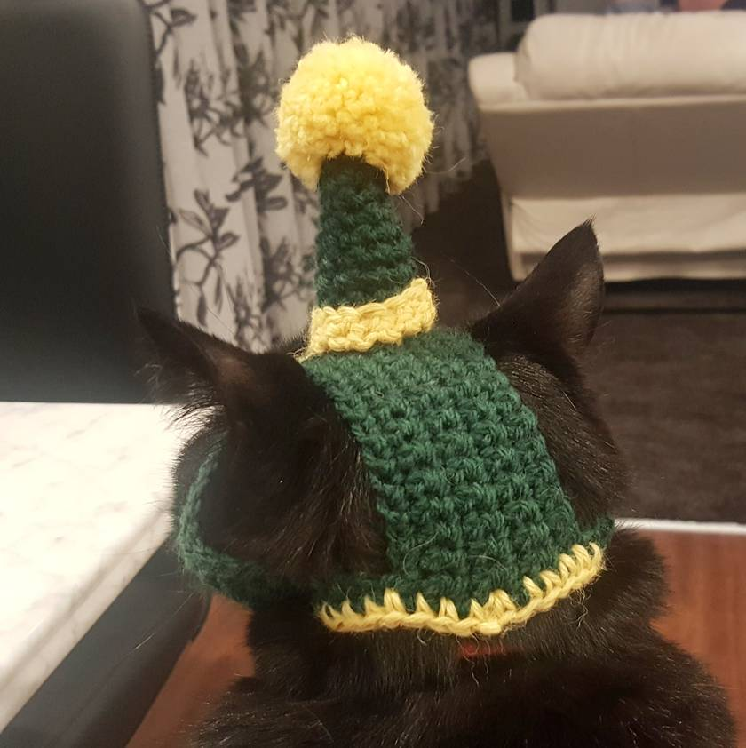 Santa's Helper Christmas Hat for Cats