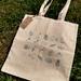 Kiwiana Tote Bag