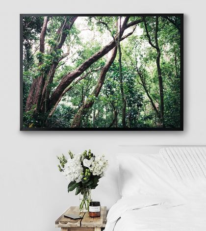 Nature | Tuhua - Fine Art Photography Print