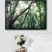 A2 Nature | Tuhua - Fine Art Photography Print