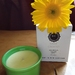 Natural Soy Candle - Citronella