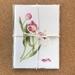 'Tulipa - Pink Twist' x 3 Fine Art Cards