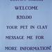 Custom Orders Ceramic Animal and Pets.